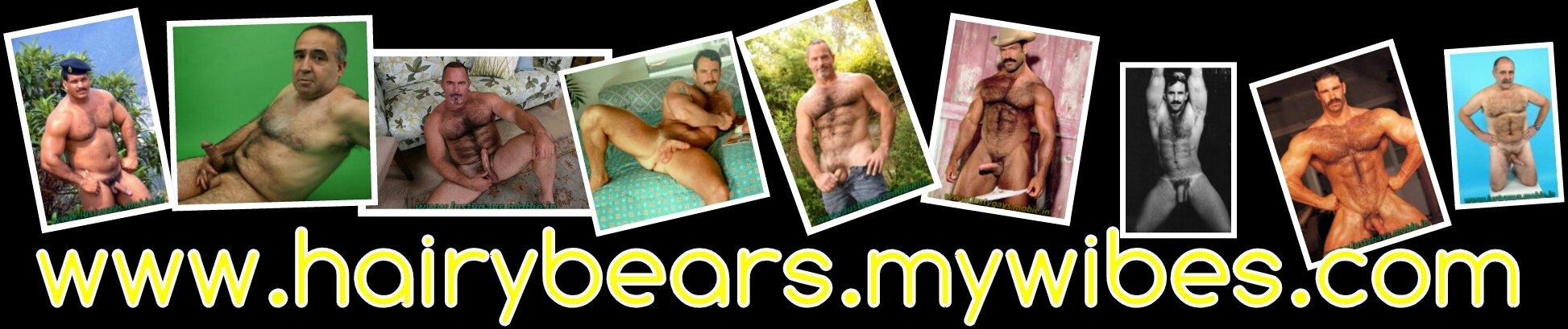 www.hairybears.mywibes.com
